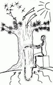 Методика «Небесный доктор»